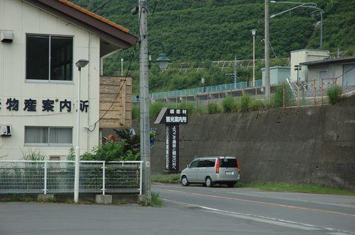 2010_5.jpg
